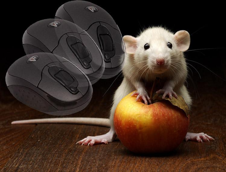 Ручная мышка