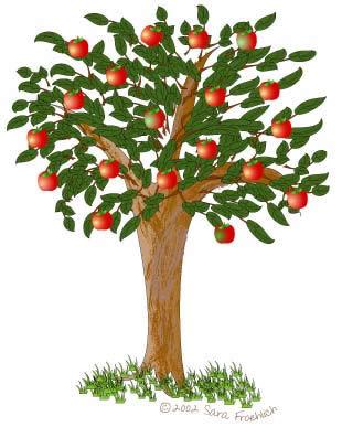 Зайка і яблыня