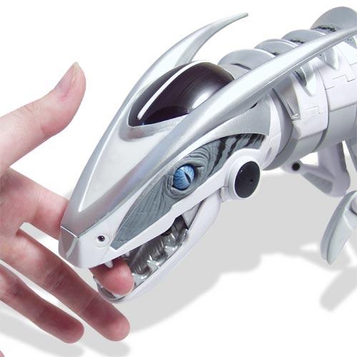 Школьник из Гродно сконструировал прототип биоморфного робота