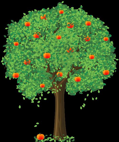 Дзед і яблыні