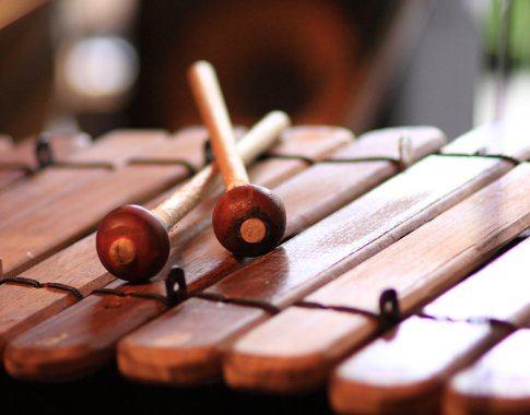 Марымба і сямейства ўдарных інструментаў