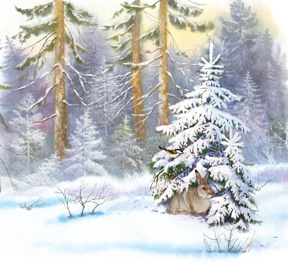 Першы снег